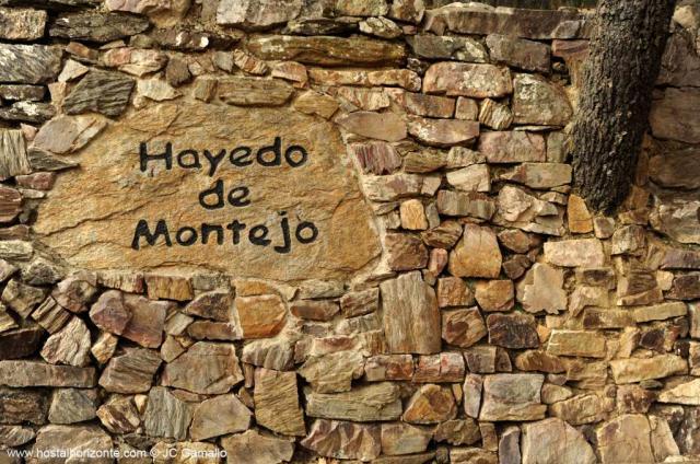 SALIDAS (MAD): Ruta de los pantanos y Sierra Pobre. 06.12.2016 Hayedo%20de%20Montejo%20de%20la%20Sierra%20Madrid%20Spain%200206.preview